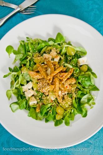 Fusion-Salat mit Sojaschnetzeln und süß-scharfer Sauce Rezept