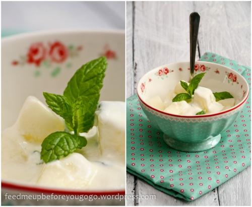 Melonen-Ingwer-Salat_mit_Minzjoghurt-5
