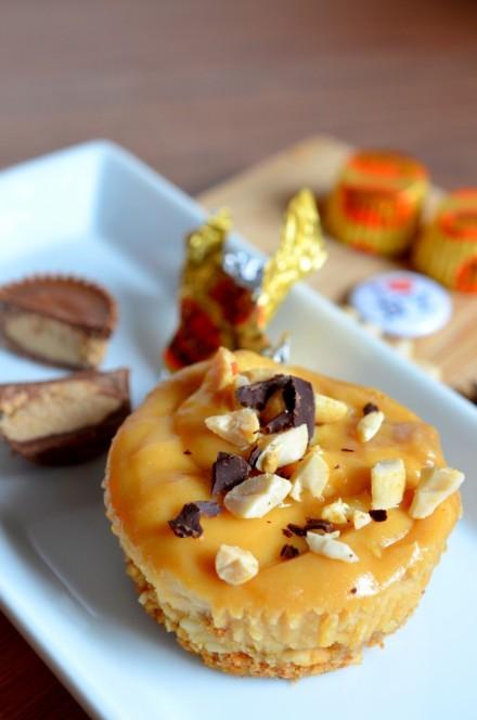 Erdnussbutter-Cheesecake4