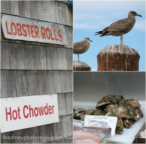Cape Cod kulinarisch Food Tipps-15